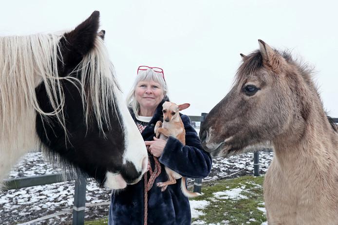 Edith Wiersma Arts tussen haar paarden en met één van haar honden.