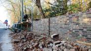 Werken aan wal en vijver kasteelpark Zwevezele zo goed als af