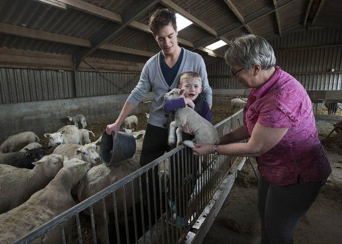 Activiteit op zorgboerderij Den Besselder in het Achterhoekse Halle. Foto: Theo Kock