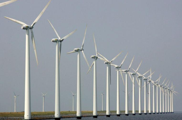 Windmolens blijken veel minder vogelslachtoffers te maken dan vaak wordt beweerd. Beeld ANP