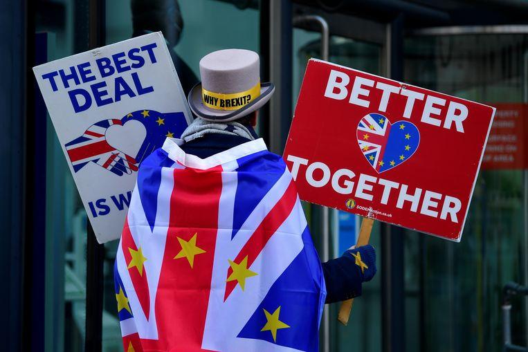 Een anti-brexit-demonstrant in London. Beeld Reuters