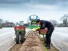 Arbeidsmigranten hard nodig in de Peel en daarom moeten ze zich thuis voelen: kwaliteit huisvesting moet omhoog