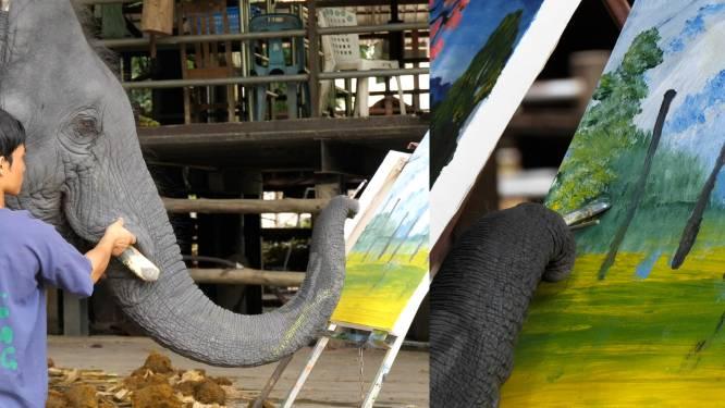 Deze olifant maakt prachtige schilderijen, die al zo'n 5.000 euro opbrachten