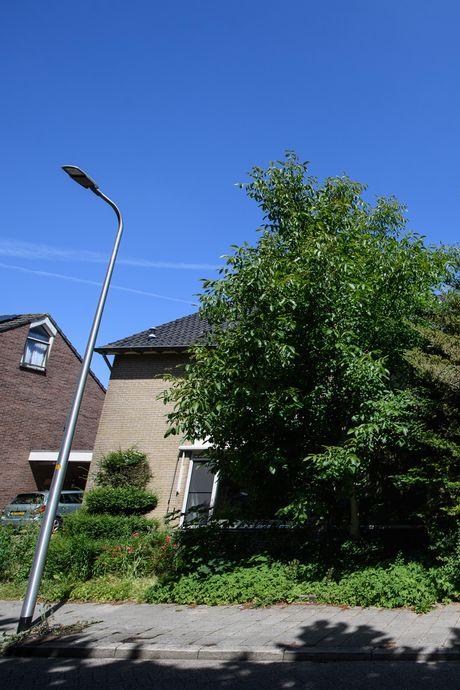 Familie spoorloos na moord op opa: wat gaat er schuil achter een verwilderde tuin?