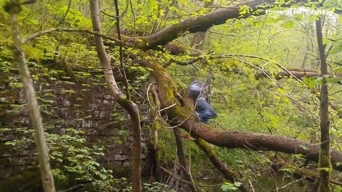Wandelaar steekt rivier over via boom maar belandt in water