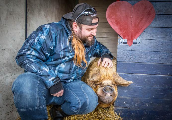 Knuffelen met varkens op landgoed De Peerdegaerdt in Strijen.