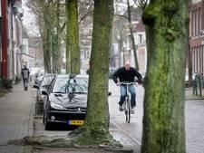 Breda kapt 58 beeldbepalende bomen Godevaert Montensstraat e.o.