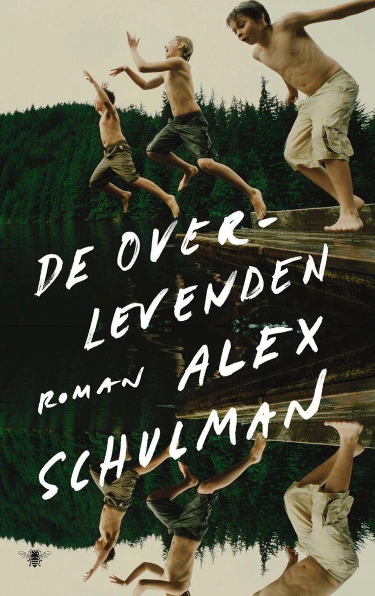 Alex Schulman, De overlevenden. Beeld