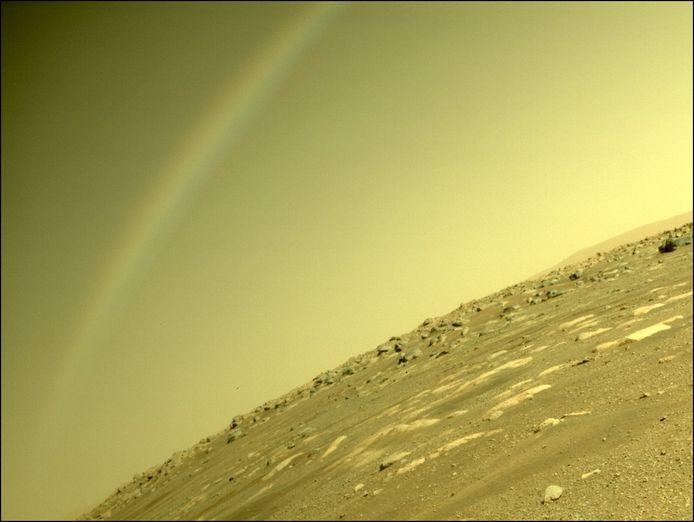 Twitter/NASA's Perseverance Mars Rover