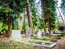 Zeist kapt ruim honderd bomen als gevolg van zomerse droogte
