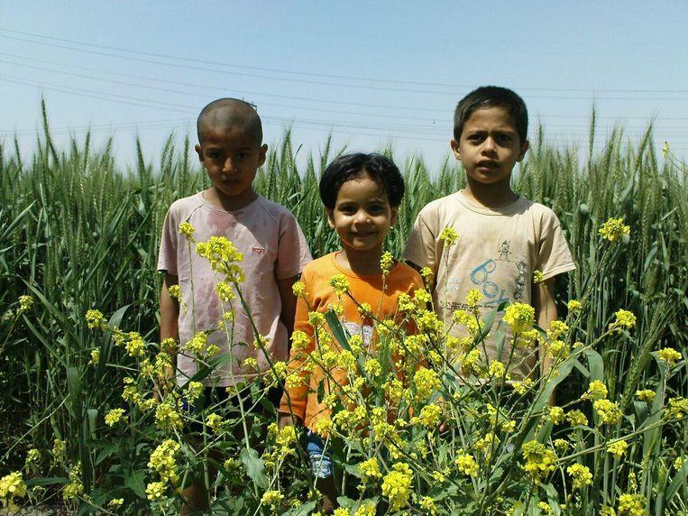 Meesam 6 (links) en zijn vriendjes in Herat, Afganistan.  Beeld Familie-archief