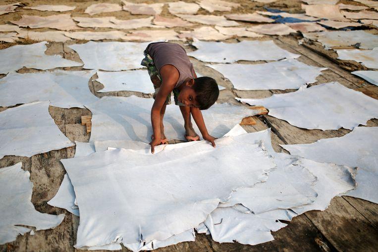 Ook in Bangladesh werken veel kinderen zonder daar oud genoeg voor te zijn Beeld Getty Images