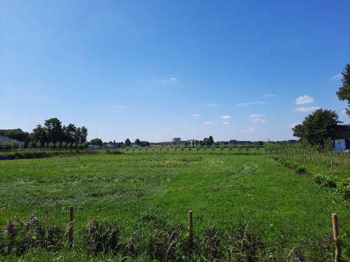 Het gebied tussen de Lage Bremberg en de Lage Vaartkant, met op de achtergrond het Trivium en links de A58. 'Bouw er niet', luidt het advies van het Waterschap Brabantse Delta.