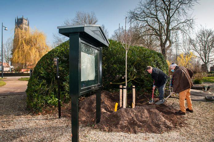 Wethouder Adrie Bragt (links) en Louis Stranders planten een Anne Frankboom op begraafplaats Bossche Poort in Zaltbommel.