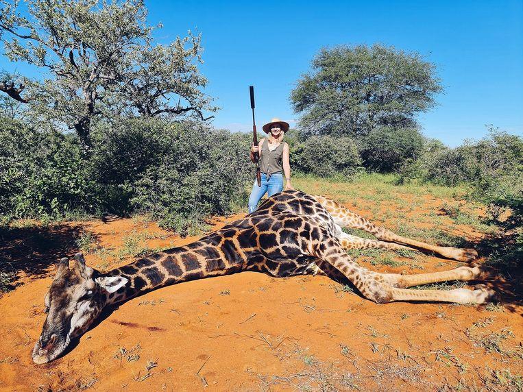 Woede over 'Valentijnsfoto' met hart van doodgeschoten giraffe - Trouw