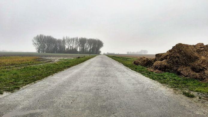 Auvergnepolder Zuiderkreekweg.