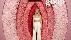 Gwyneth Paltrow deelt de beste vibrators om te gebruiken tijdens de lockdown