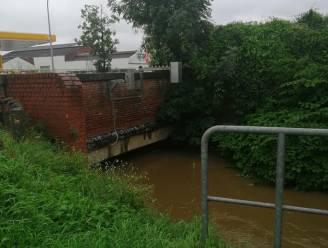 Ook wateroverlast in Sint-Pieters-Leeuw: Water uit verzadigde beken wordt overgepompt  naar kanaal