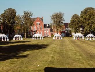 5 weekendstips uit het Meetjesland: van picknicken in bubbeltenten in Kaprijke tot wegdromen van het Parijse nachtleven in Eeklo