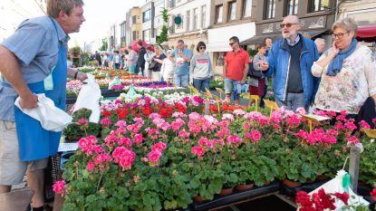Daar is de lente, daar is de bloemenmarkt