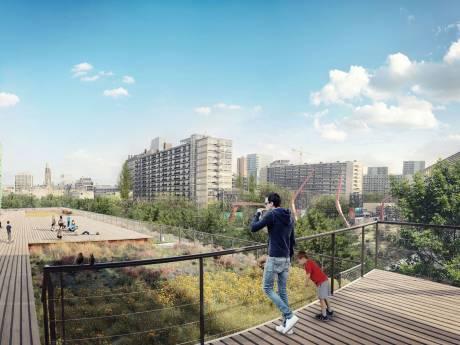 Dak van de Doelen verandert in groene oase: 'Alle Rotterdammers hebben er straks plezier van'