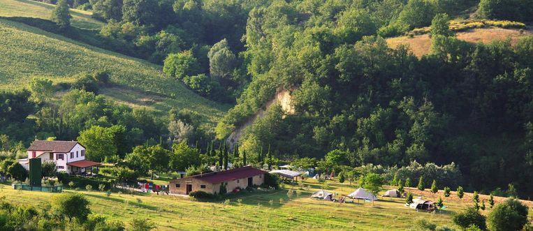 Agricamp Picobello. Beeld