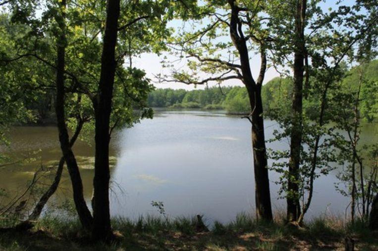 De legende vertelt dat de klok in deze Oostmalse waterplas verstopt werd.