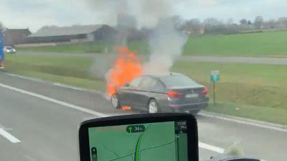 VIDEO. Auto in lichterlaaie op snelweg in Assenede: geen gewonden