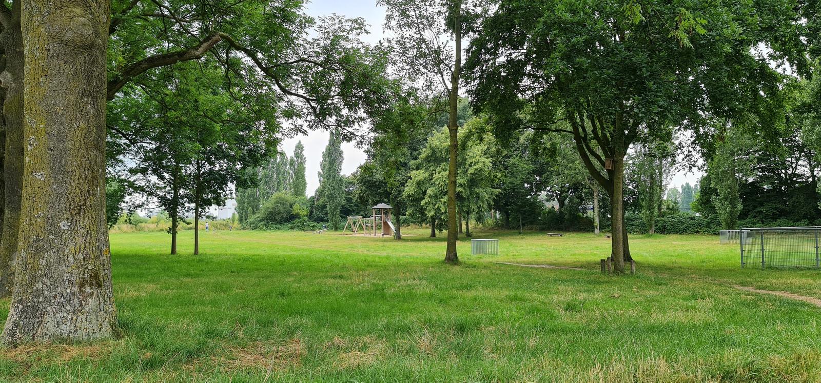 In dit park dat grenst aan de Bredestraat en de Oscar Carréstraat is maandagavond een 25-jarige vrouw uit Nijmegen op gewelddadige wijze beroofd. De dader stal haar tas en probeerde haar vervolgens te wurgen.