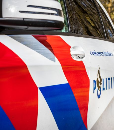 Politieagenten Landelijke Eenheid Driebergen gaan elkaar te lijf