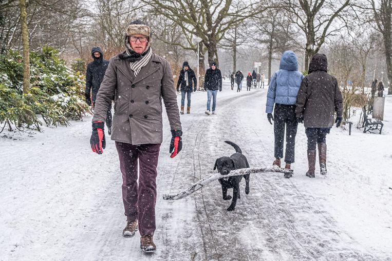 Sneeuwpret in Amsterdam.  Beeld Joris van Gennip