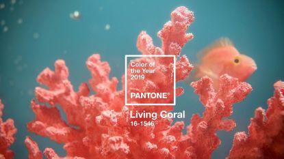 Dit wordt de nieuwe kleur van het jaar volgens Pantone