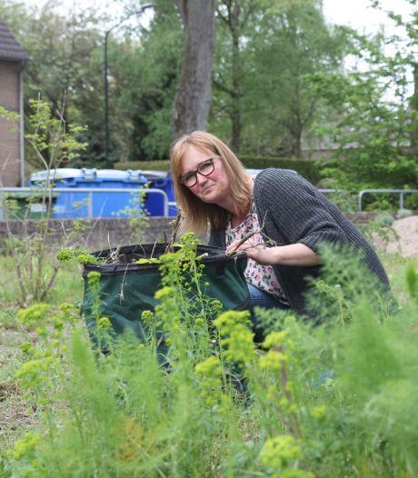 Herborist Barbara Kuipers: 'Vraag aan de plant of je iets mag plukken'