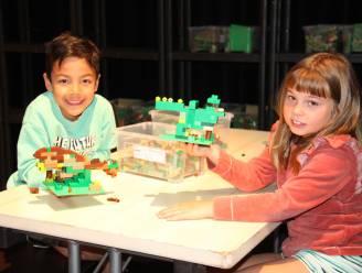 5 x uit dit weekend nabij de kust: van Lego-kunstwerkjes bouwen tot circusvoorstellingen bijwonen