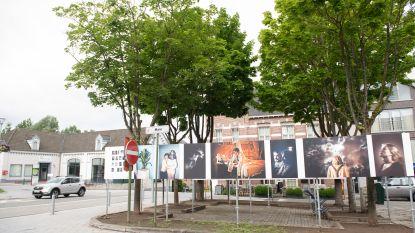 Fotoclub Gafodi Gavere exposeert eigen werk en foto's van gastfotografen