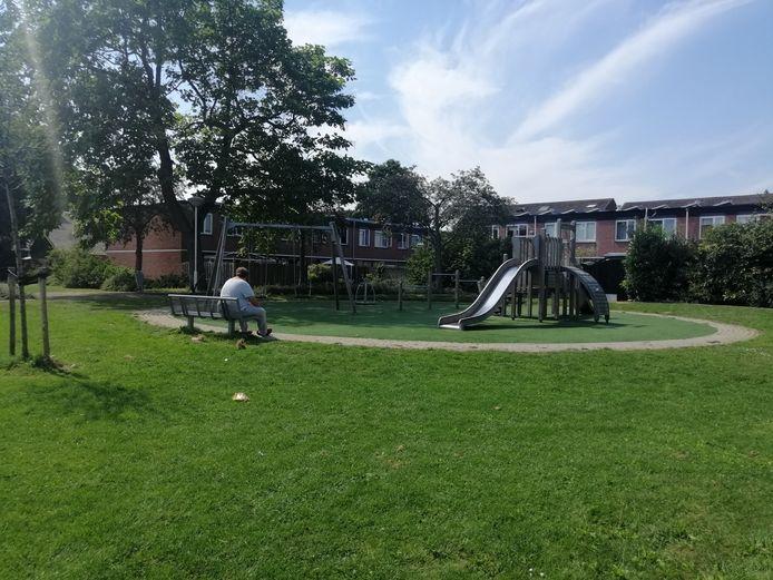 Hangjongeren in de speeltuin op de hoek van de Frederik van Eedenhove en Datheenhove in Buytenwegh zorgen voor grote problemen.