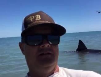 Mannen filmen witte haai maar zien niet dat het eigenlijke gevaar zich vlakbij bevindt
