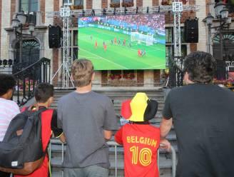 Grote schermen toegelaten voor EK voetbal