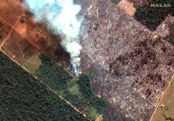 Image de la déforestation et des feux dans l'État de Rondonia, au Brésil