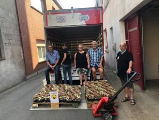 """Kaaimannen schenken 750 bloemetjes aan vaccinatiecentrum RupeLaar: """"Een voor elke vrijwilliger"""""""