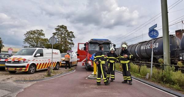 Nieuwsoverzicht | Dodelijk ongeval in Veghel - Botsing op snelweg door overstekende hond.