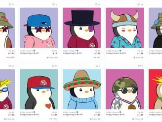 Deze kleurrijke pinguïns veroveren het internet: grappig, uniek, maar vooral héél duur. Maak kennis met de Pudgy Penguins