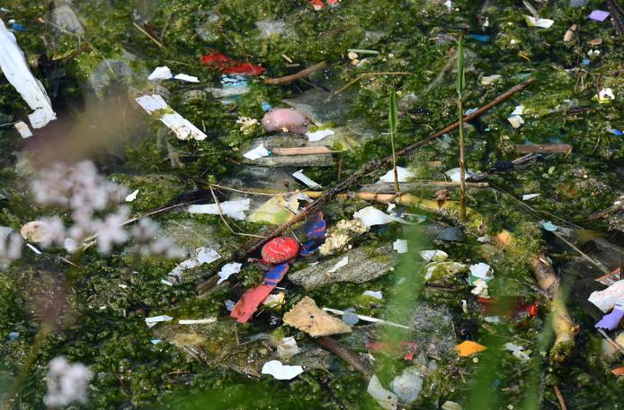 Sterke vervuiling in uiterwaarde ter hoogte van de Rijnbanddijk.