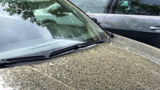 Zo kom je van dat schadelijke stuifmeel op je auto af