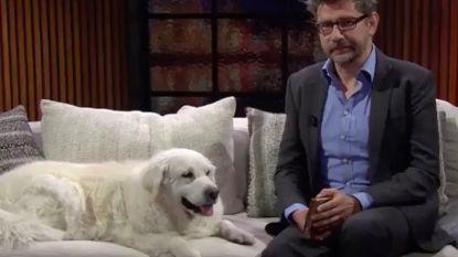 """Boris, de trouwe viervoeter van Wim Helsen uit 'Winteruur', is overleden: """"Het ga je goed"""""""