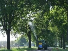 Geen chemische bestrijding jeukrups in Dongen