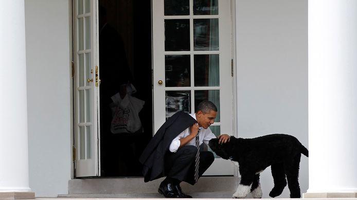 Obama met Bo in maart 2015.