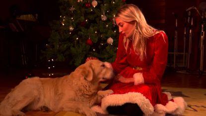 Paul Michiels, Wim Soutaer, Tinne Oltmans en vele anderen zingen kerstliedjes in 'The Christmas Show'