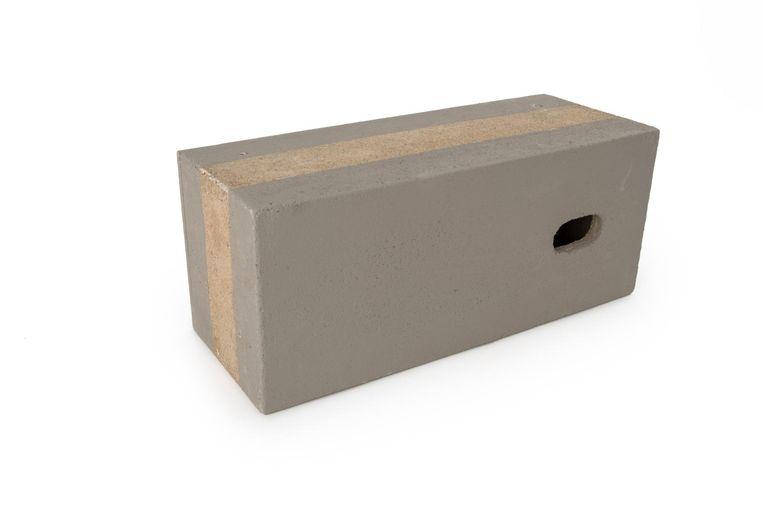 Met inbouwstenen kun je het makkelijker maken voor vogels om zich in je huis te vestigen. Deze steen is speciaal voor de gierzwaluw. Beeld Vivarapro