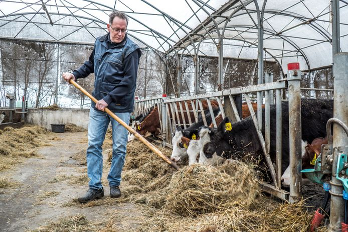 Hoeve Rust-hoff is biologisch en gaat zijn eigen melk verkopen aan particulieren.